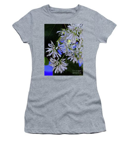 Women's T-Shirt featuring the photograph Carly's Tree - The Delicate Grow Strong by Rick Locke