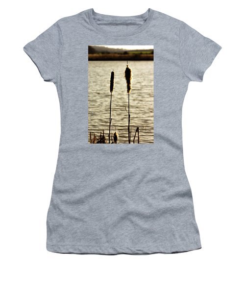 Cattails In The Sun Women's T-Shirt