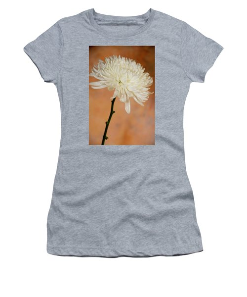 Chrysanthemum On Canvas Women's T-Shirt