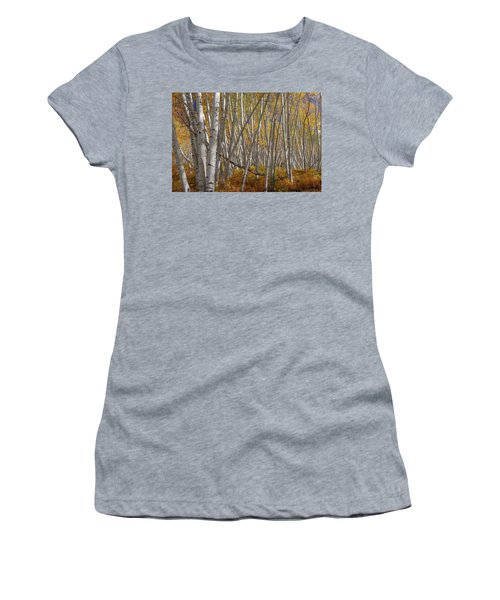 Women's T-Shirt (Athletic Fit) featuring the photograph Colorful Stick Forest by James BO Insogna