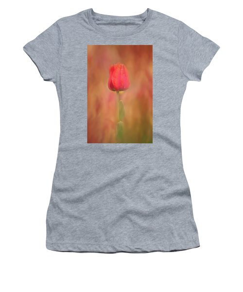 Women's T-Shirt featuring the photograph Colors Of Spring #3 by Allin Sorenson