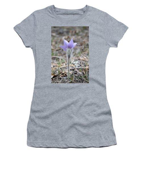 Crocus Detail Women's T-Shirt