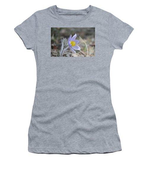 Crocus Women's T-Shirt
