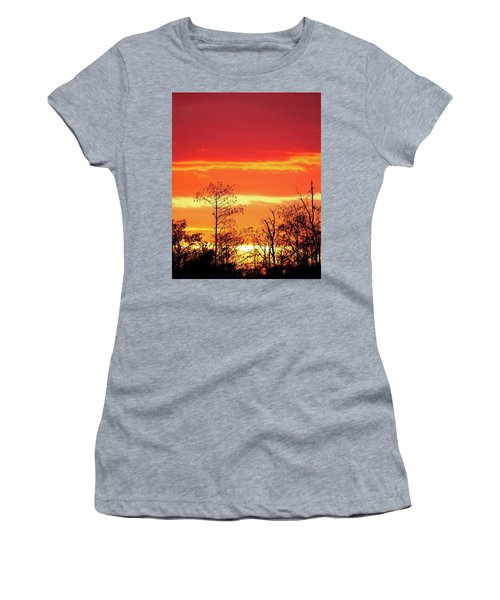 Cypress Swamp Sunset 5 Women's T-Shirt