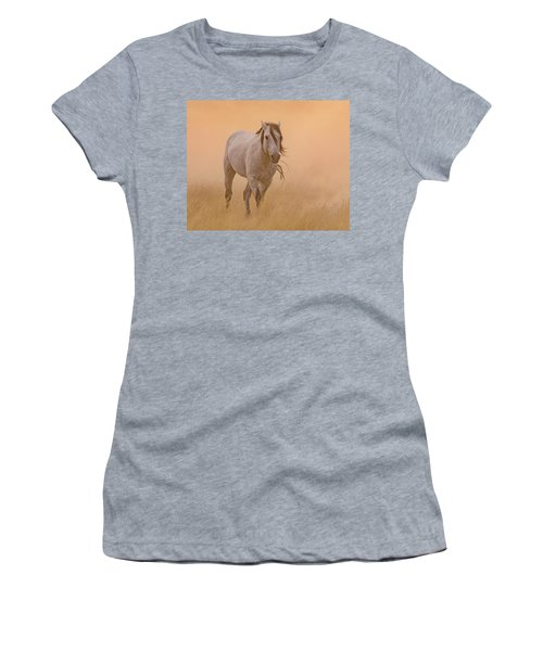 Dusty Evening Women's T-Shirt