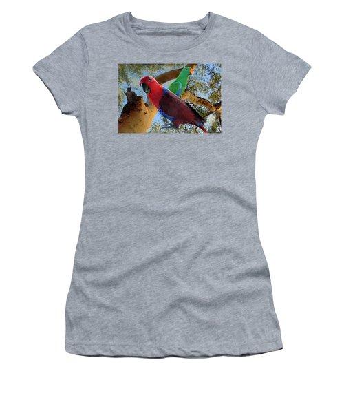 Eclectus Parrots Women's T-Shirt