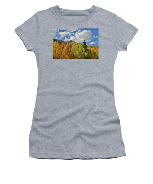 Fall Colored Aspens Bask In Sun At Red Mountain Pass Women's T-Shirt