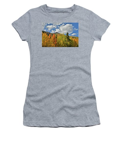 Fall Colored Aspens Bask In Sun At Red Mountain Pass Women's T-Shirt (Athletic Fit)