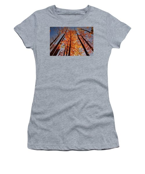 Fall Trees Sky Women's T-Shirt