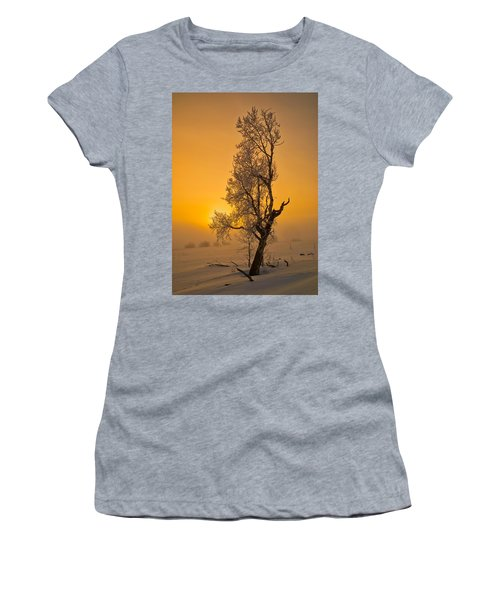 Frosted Tree Women's T-Shirt