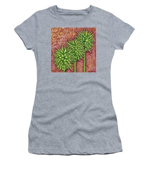 Garden Room 33 Women's T-Shirt