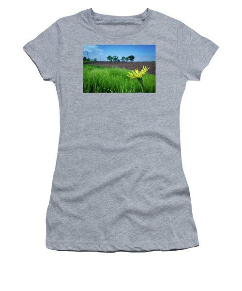 Goat's Beard On Nelson Farm II Women's T-Shirt