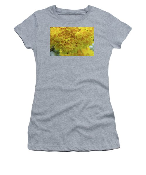 Women's T-Shirt featuring the photograph Golden Tree, Golden Trumpet Tree Or Tallow Pui Dthn0255 by Gerry Gantt