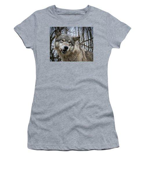 Grrrrrrrr Women's T-Shirt