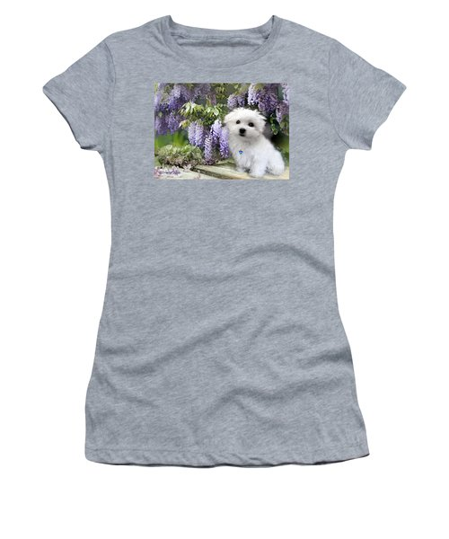 Hermes And Wisteria Women's T-Shirt