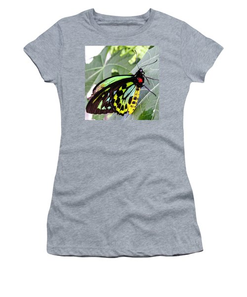 Insect Kaleidescope Women's T-Shirt