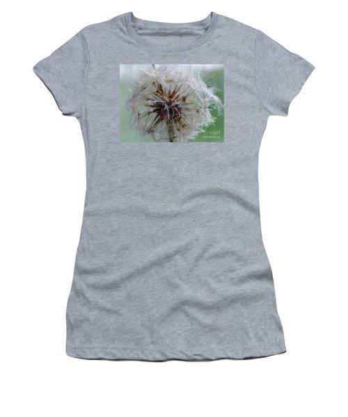 Irish Daisy Women's T-Shirt