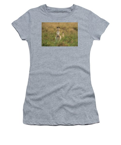 Women's T-Shirt featuring the photograph Kangaroos In The Countryside by Rob D Imagery
