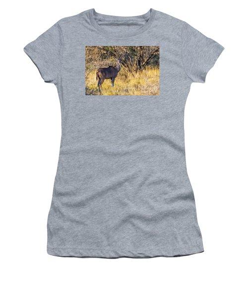 Kudu, Namibia Women's T-Shirt