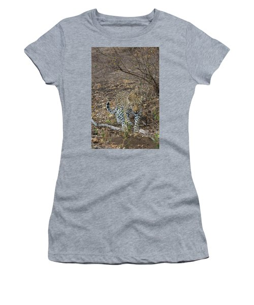 Women's T-Shirt featuring the photograph LC2 by Joshua Able's Wildlife