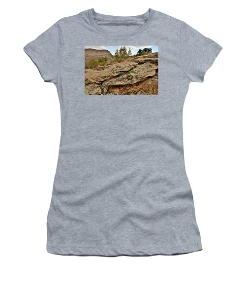 Lichen Covered Ledge In Colorado National Monument Women's T-Shirt