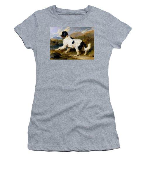 Lion, A Newfoundland Dog - Digital Remastered Edition Women's T-Shirt