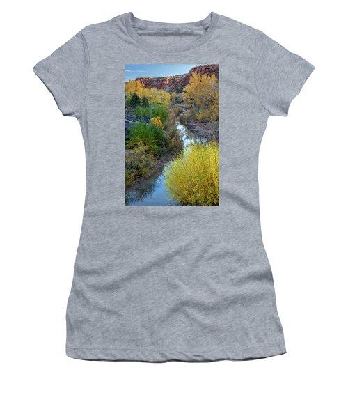 Little Dominguez Women's T-Shirt