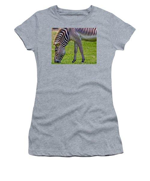 Love Zebras Women's T-Shirt