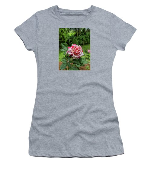 Neil Diamond Rose Women's T-Shirt