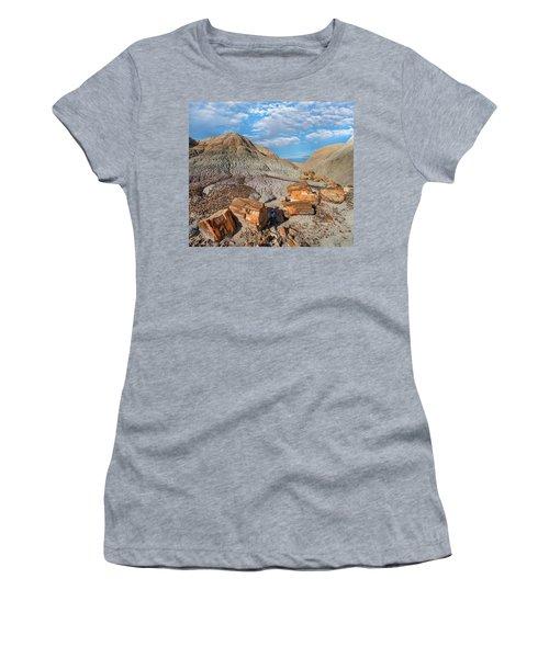 Petrified Logs, Blue Mesa, Petrified Women's T-Shirt