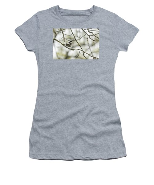 Pied Flycatcher Women's T-Shirt