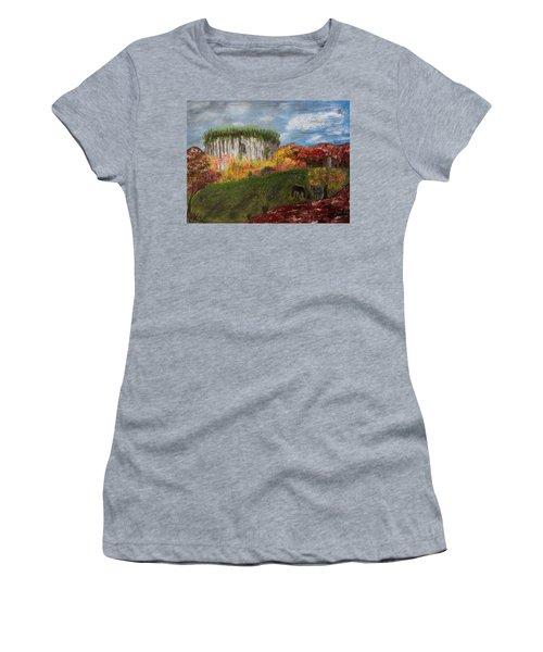 Pilot Mountain Women's T-Shirt
