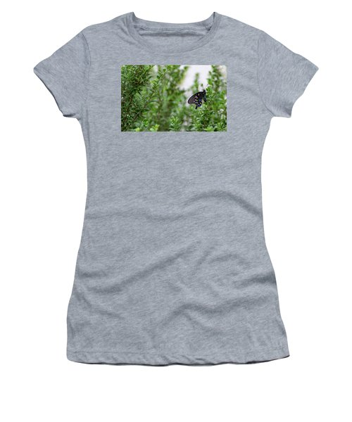 Pipevine Swallowtail Women's T-Shirt