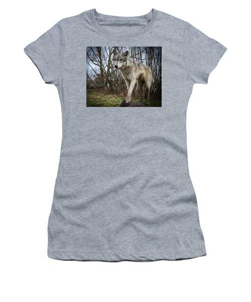 Posing Women's T-Shirt