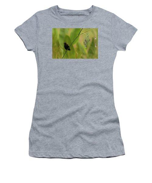 Red-winged Blackbird On Alligator Flag Women's T-Shirt