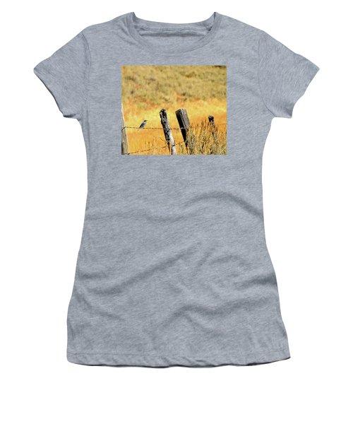 Rocky Mountain Blue Bird Women's T-Shirt