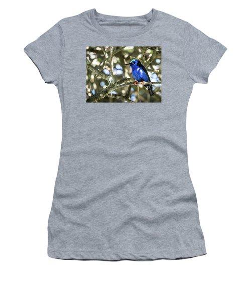 Shades Of Blue Women's T-Shirt