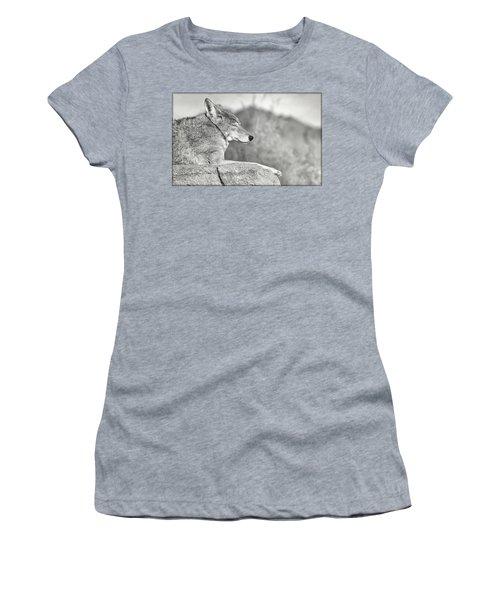 Sleepy Coyote Women's T-Shirt