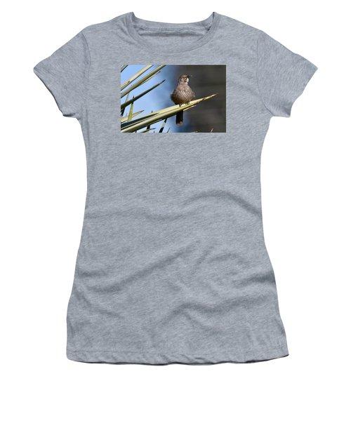 Squawker Women's T-Shirt