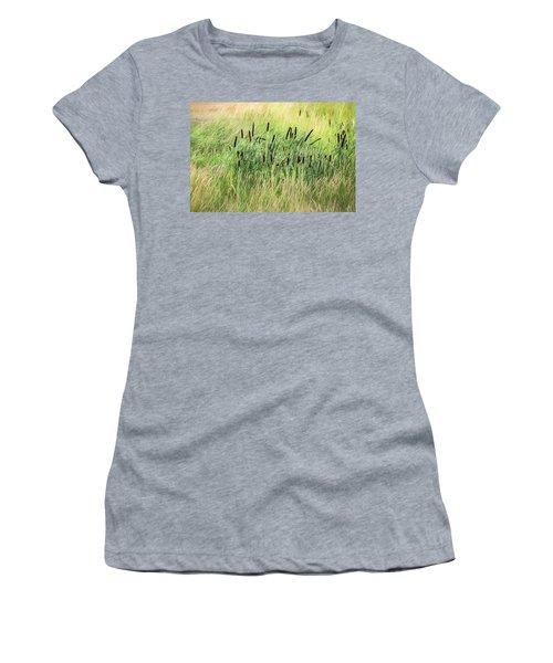 Summer Cattails In Field Of Grass - Women's T-Shirt