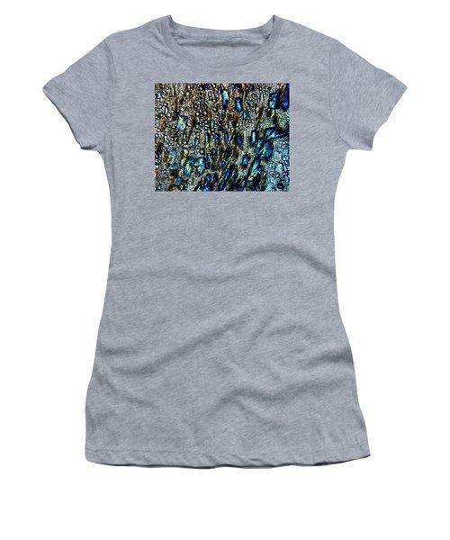 The Leveler Women's T-Shirt