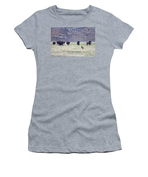 The Naming Of Spitfire Women's T-Shirt