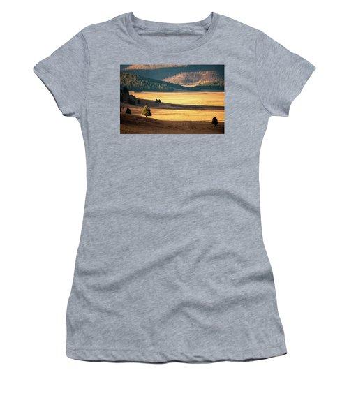 Valles Caldera Detail Women's T-Shirt