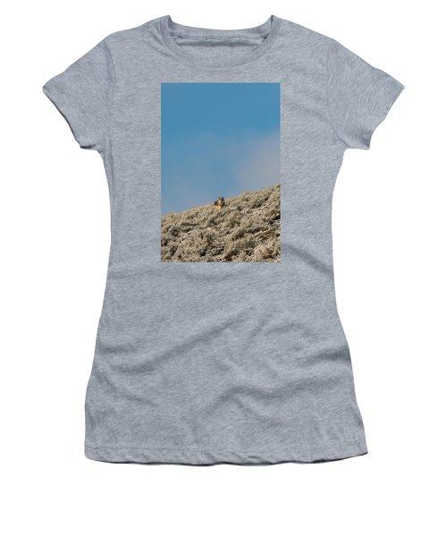 W24 Women's T-Shirt