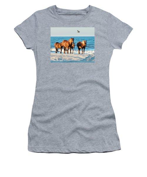 Wild Colonial Spanish Mustangs Of Carova Women's T-Shirt
