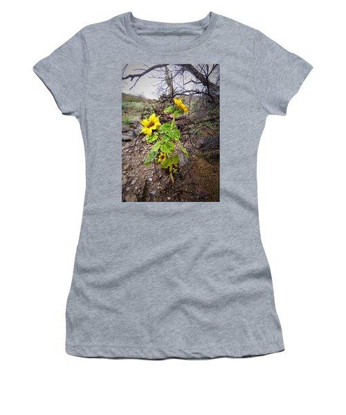 Wild Desert Sunflower Women's T-Shirt