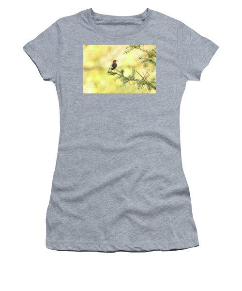 Yellow-rumped Warbler Women's T-Shirt