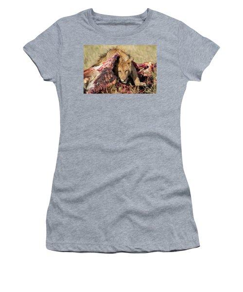 Young Lion On Cape Buffalo Kill Women's T-Shirt