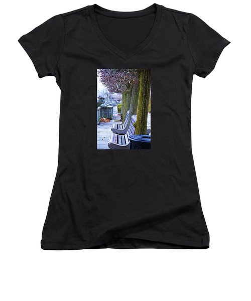 Women's V-Neck T-Shirt (Junior Cut) featuring the photograph  Colours In The Park by Al Fritz