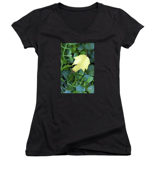 Fallen Yellow Leaf Women's V-Neck (Athletic Fit)